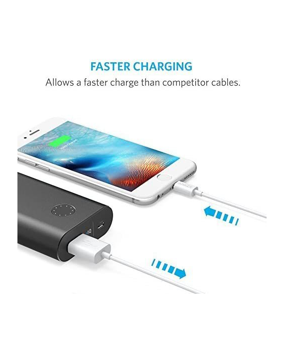 Anker Premium 3ft Lightning to USB Cable